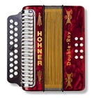 Hohner Double Ray Diatonic Accordion