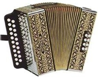 Hohner HA-2815 Pokerwork 2 Row Melodeon Accordion